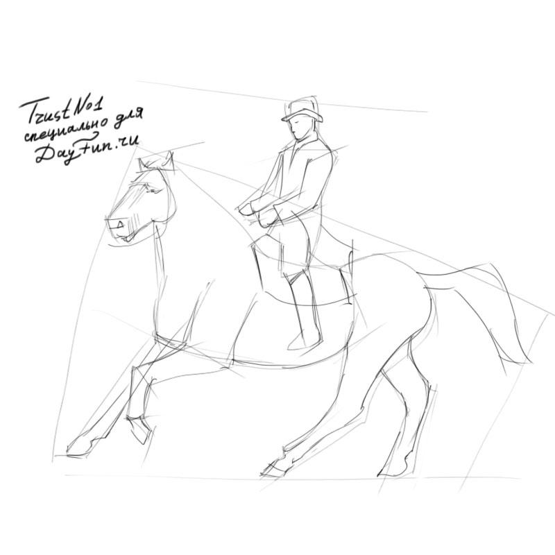 Icelandic Horse coloring page  Free Printable Coloring Pages